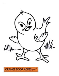 Colouring Page – 2